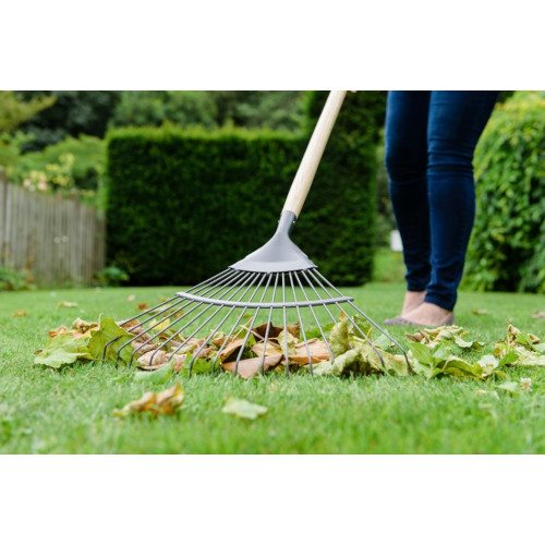 Kent and Stowe 70100261 Carbon Steel Long Handle Lawn and Leaf Rake